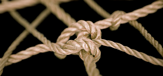 Knot in web of rough rope.